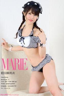 藍田麻利衣 ビキニ水着1 DVD-ROM