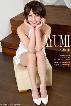 小柳歩 チャイナドレス DVD-ROM