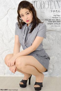 トロたん OL制服3 DVD-ROM